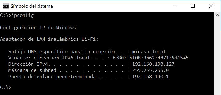 Dirección IP en Microsoft Windows 10 Profesional